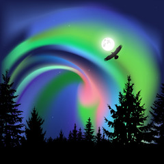 Coniferous trees.  Flying eagle. Green, pink and blue northern lights.