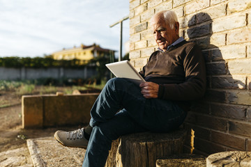 Senior man sitting on tree stump using tablet
