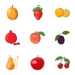 Fresh fruit icons set. Cartoon illustration of 9 fresh fruit vector icons for web