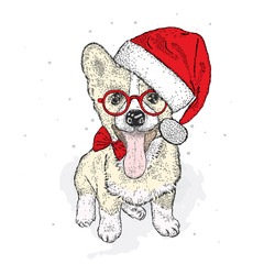 Cute puppy in a Christmas hat and sunglasses. Vector illustration. New Year's and Christmas. Welsh-Corgi-Pembroke.