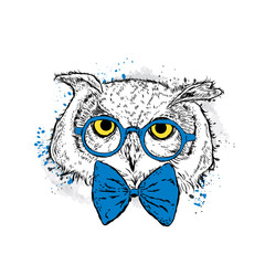 Deurstickers Hand getrokken schets van dieren Cute owl with glasses and a tie. Vector illustration for a card or poster. Print on clothes. Bird. Fashion & Style.