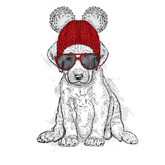Cute puppy wearing a hat and glasses. Illustration for a card or print on clothes. Poster. Vector drawing