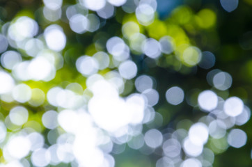 Natural outdoors abstract bokeh in green and yellow tones with sun rays.Texture Wallpaper Background.