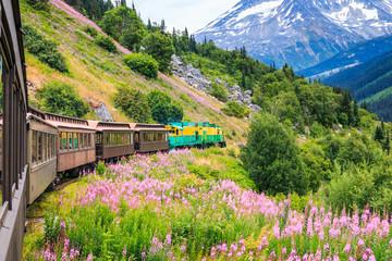 Skagway, Alaska. The scenic White Pass & Yukon Route Railroad. Wall mural