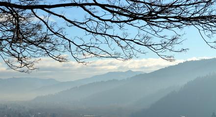 Schwarzwaldpanorama im Nebel