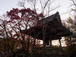 秋の伊豆修善寺