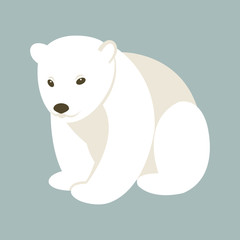 Polar bear young style flat  vector illustration