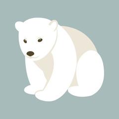 Polar bear young style flat  vector illustration