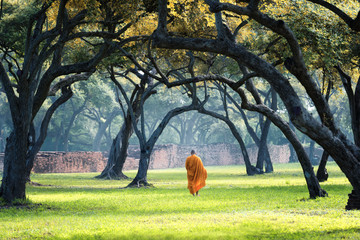 Photo sur Aluminium Bestsellers monastic buddhism decoration walk in green park - tourist travel statue wat culture history castle palace grand celebration east traditional