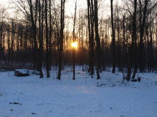 Zima.  Winter