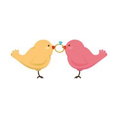 birds wedding card celebration vector illustration design