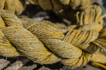 Strands of Rope