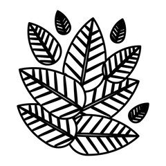 Leaf icon. Plant floral nature and decoration theme. Isolated design. Vector illustration