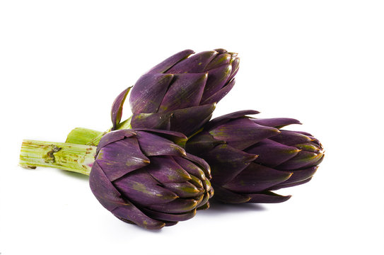 Purple artichokes from italy isolated on a white background