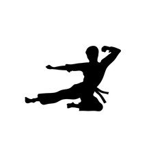 Karate sport vector ,martial art silhouette vector, fight sport vector