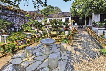 CN Suzhou Garden Bonsais