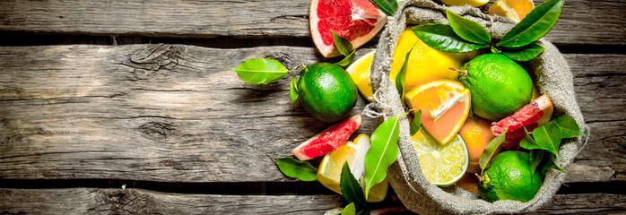 Citrus fruits - grapefruit, orange, tangerine, lemon, lime in th Fototapete