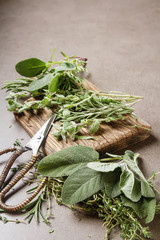 Mix of fresh Italian herbs from garden on an old table. Rosemary