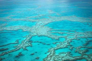 great barrier reef, Queensland, East Coast Australia