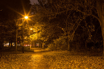 London park at night