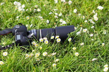 Blurred image soft focus. Professional camera on  the grass with flowers surround.