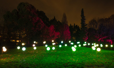 Enchated gardensgrass lights