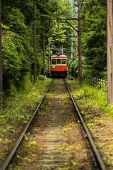箱根の初夏