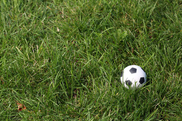 Soccer ball isolated on the field. Close up