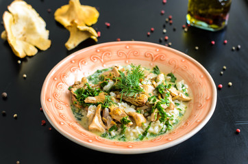 Delicious risotto with porcini mushrooms over rustic black background