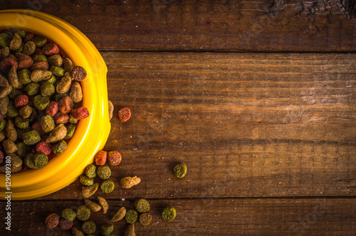 cat food in a bowl on wooden background