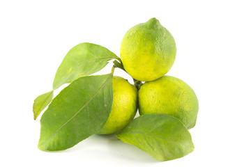 Limoni semi acerbi