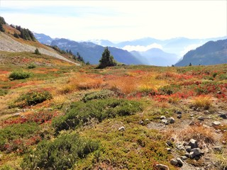North cascades mountain range from Ptarmigan ridge trail in fall