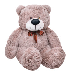 Grey toy plush teddy bear