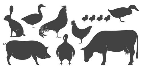 Farm Animal. Silhouette