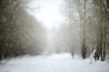 The falling snow Christmas background. bokeh