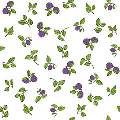 Beautiful seamless pattern with natural fresh blueberries. Hand drawn sketch elements on white background
