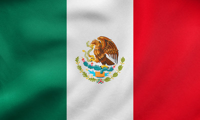 Flag of Mexico waving, real fabric texture