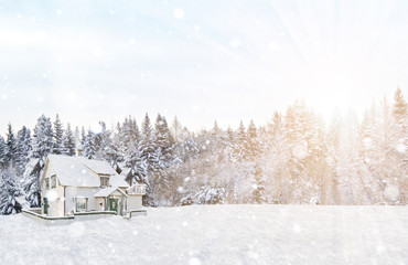 winter, forest, house