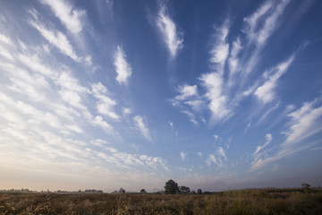 landscape of rural area in the morning with blue sky with light clouds