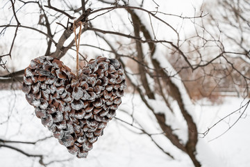 Heart of scales of pine cones hanging on tree on white winter ba