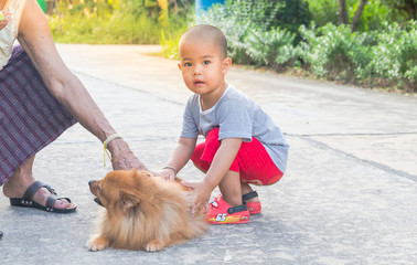 Little boy playing with beauty dog his friend,young asian childr