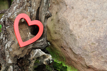 Valentines day. A red heart isolated against a tree trunk
