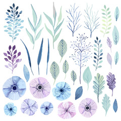 Vector watercolor flowers.