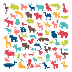 Big set of animals silhouettes in cartoon style. Wild life