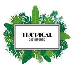 Tropical leaves background. Summer design. Square frame