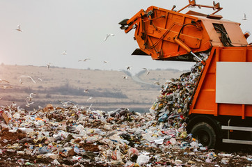 Garbage truck dumping the garbage on a landfill