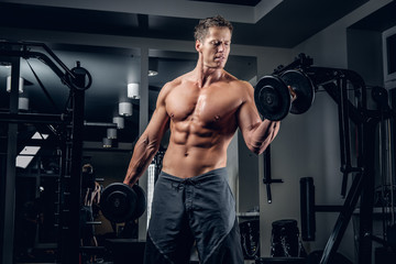 Muscular shirtless male doing biceps exercise with dumbbells.