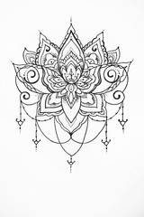 Sketch of a lotus on white background.