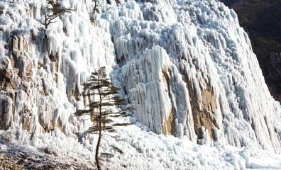 청솔 얼음골의 빙벽