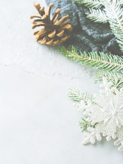 Winter background with fir tree branches and pine cone